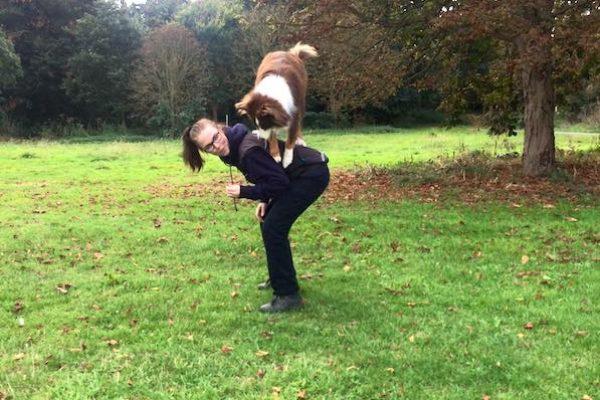 Lär hunden trix och konster